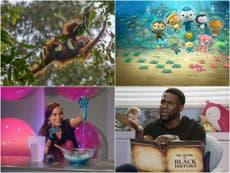 Die 10 best educational shows on Netflix