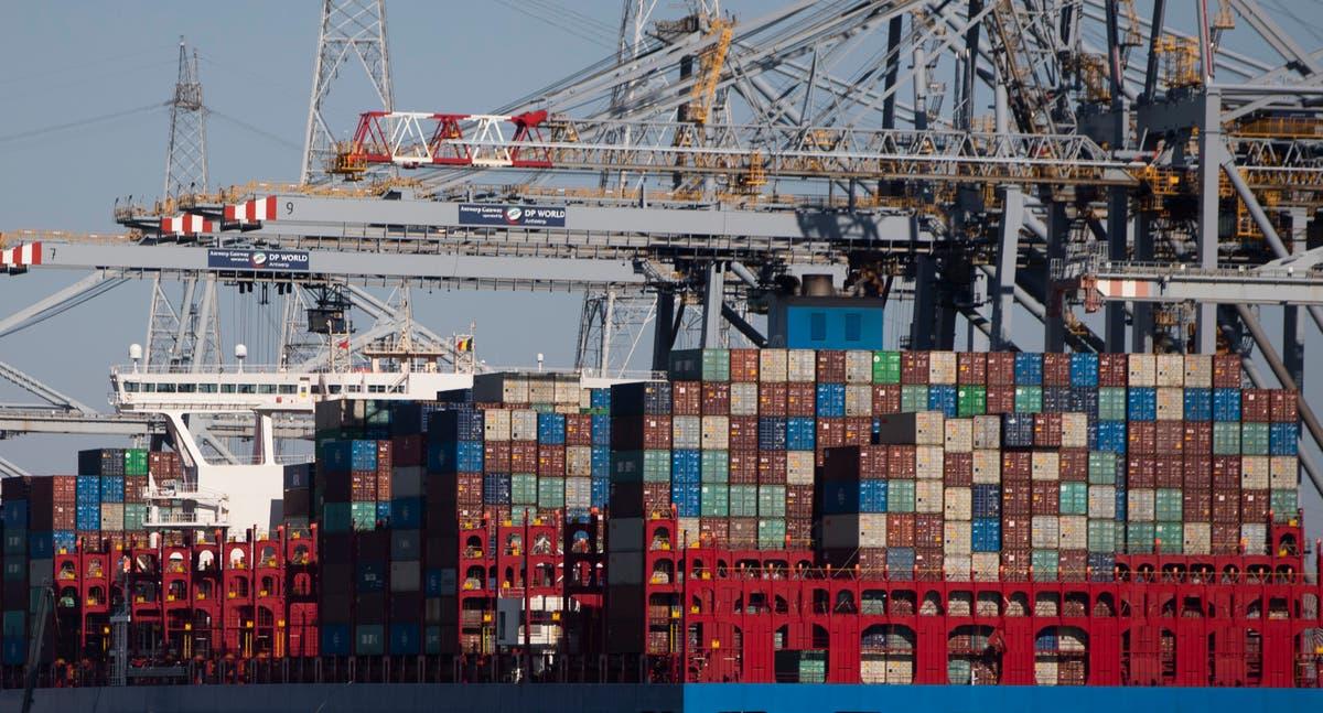 World economy to bounce back next year, OECD forecasts