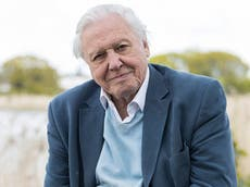 David Attenborough turns 95: His best quotes on nature, sustainability and humankind