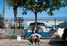 Homelessness in US was 'devastating' before pandemic. Covid likely made the crisis worse
