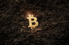 Bitcoin price – live: Crypto recovers slightly after Elon Musk sends BTC and other coins plunging