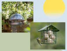 9 best bird feeders to attract wild birds to your garden