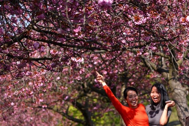 Women enjoy sunny weather in Greenwich, amid the coronavirus disease (COVID-19) outbreak, in London, Britain,