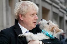 Boris Johnson backs pet theft taskforce, claiming 'malicious' dognappers could commit more 'serious crimes'