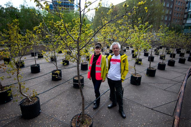 Artists Heather Ackroyd and Dan Harvey stand within 100 oak saplings which form part of a living art installation entitled Beuys' Acorns by the UK-based artist duo, outside the Tate Modern in London