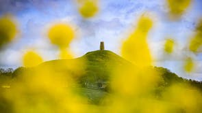 People mill around St. Michael's tower on top of Glastonbury Tor as it is seen through blooming yellow rapeseed on a day of mixed weather in Glastonbury, Somerset