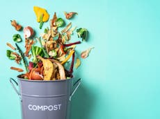 Use by, sell by, best before: Why confusing labelling is causing food waste, and how to stop it