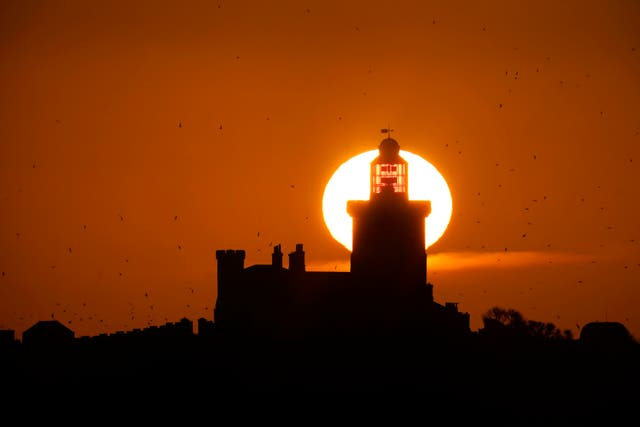 The sun rises on Coquet Island, off Amble on the Northumberland coast, where as many as 35000 seabirds cram onto this tiny island to breed