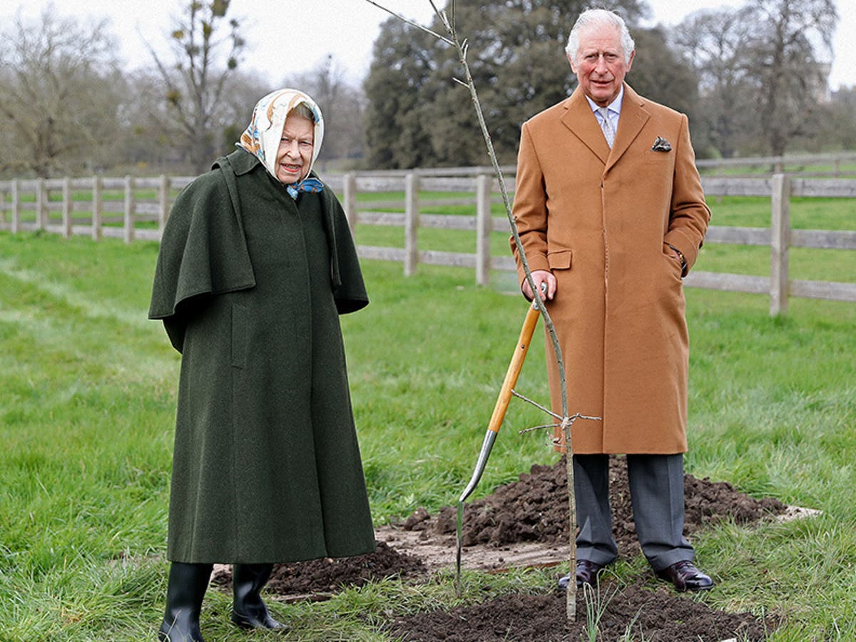 Queen asks the public to plant a tree to mark her Platinum Jubilee