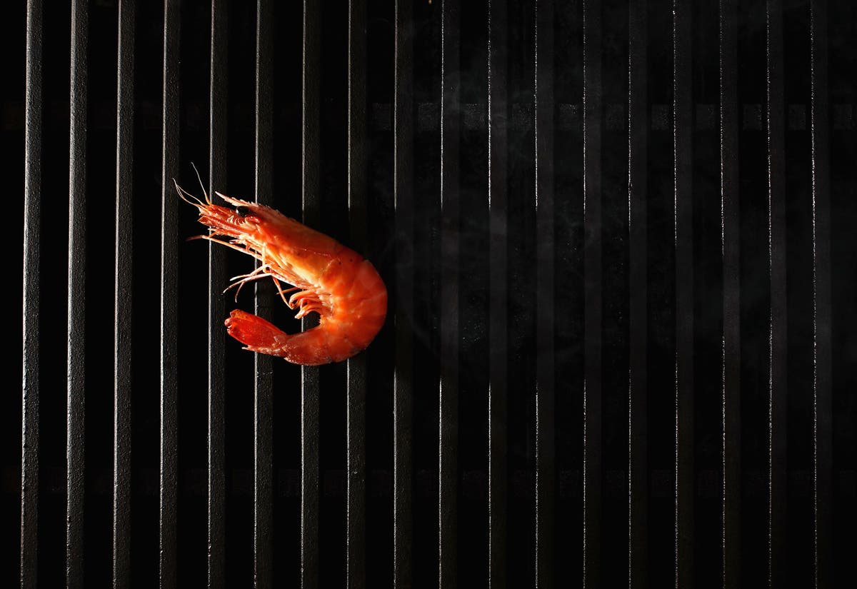 Man fined $100 per prawn after killing more than 6,000 of them in Hawaii stream