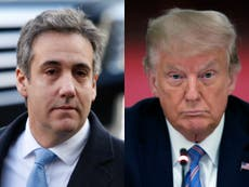 Michael Cohen mocks Trump in photoshopped jail post: 'The troubles for Donald Trump will keep on coming'