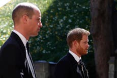 'They let my mother down': William and Harry's statements on BBC's Diana interview in full