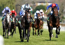 Classic Trial winner Alenquer set to reappear in King Edward VII
