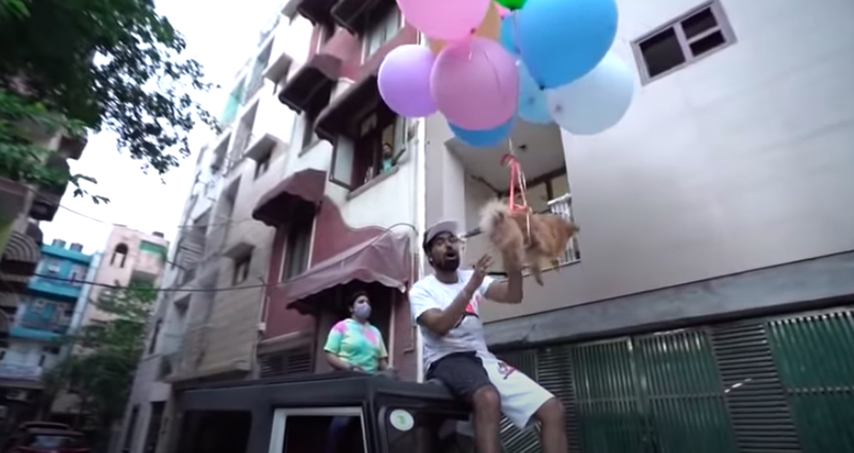 YouTuber arrested for tying dog to hydrogen balloons and making it float through Delhi