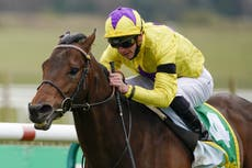 Haggas sets My Oberon another Group One challenge in Prix d'Ispahan