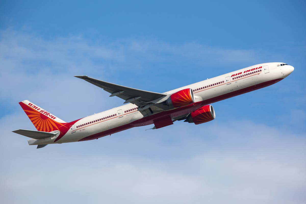 Air India flight returns to Delhi after bat discovered in business class
