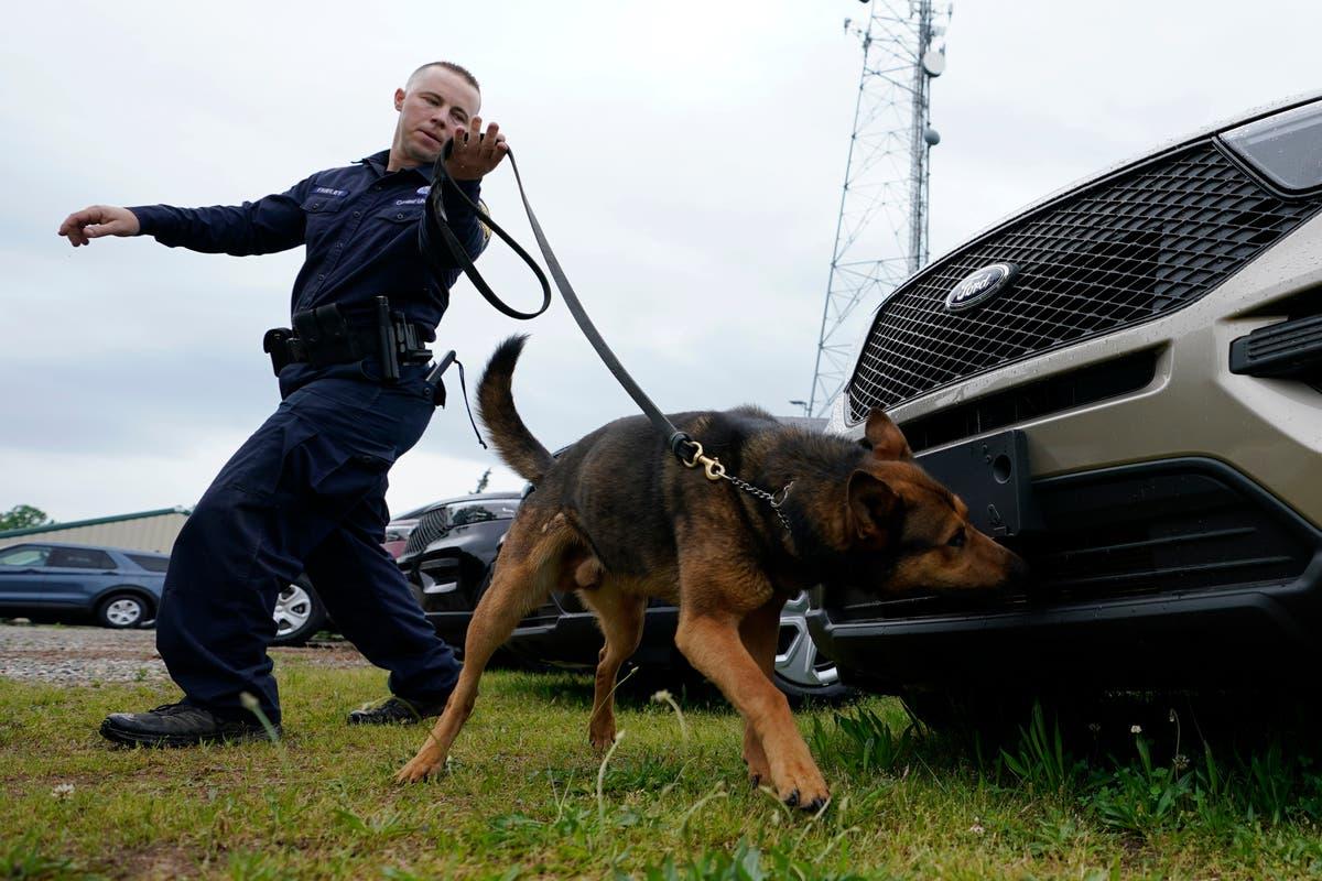 Marijuana legalization prompting police K-9 retirements