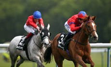La Lune reaches the summit in Pinnacle Stakes