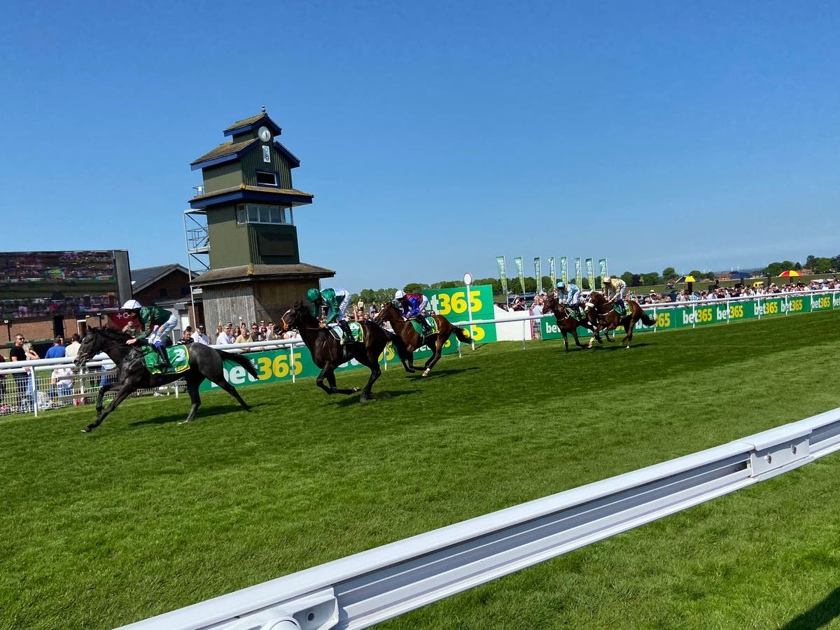 Tipperary Sunset still unbeaten and heading for Royal Ascot