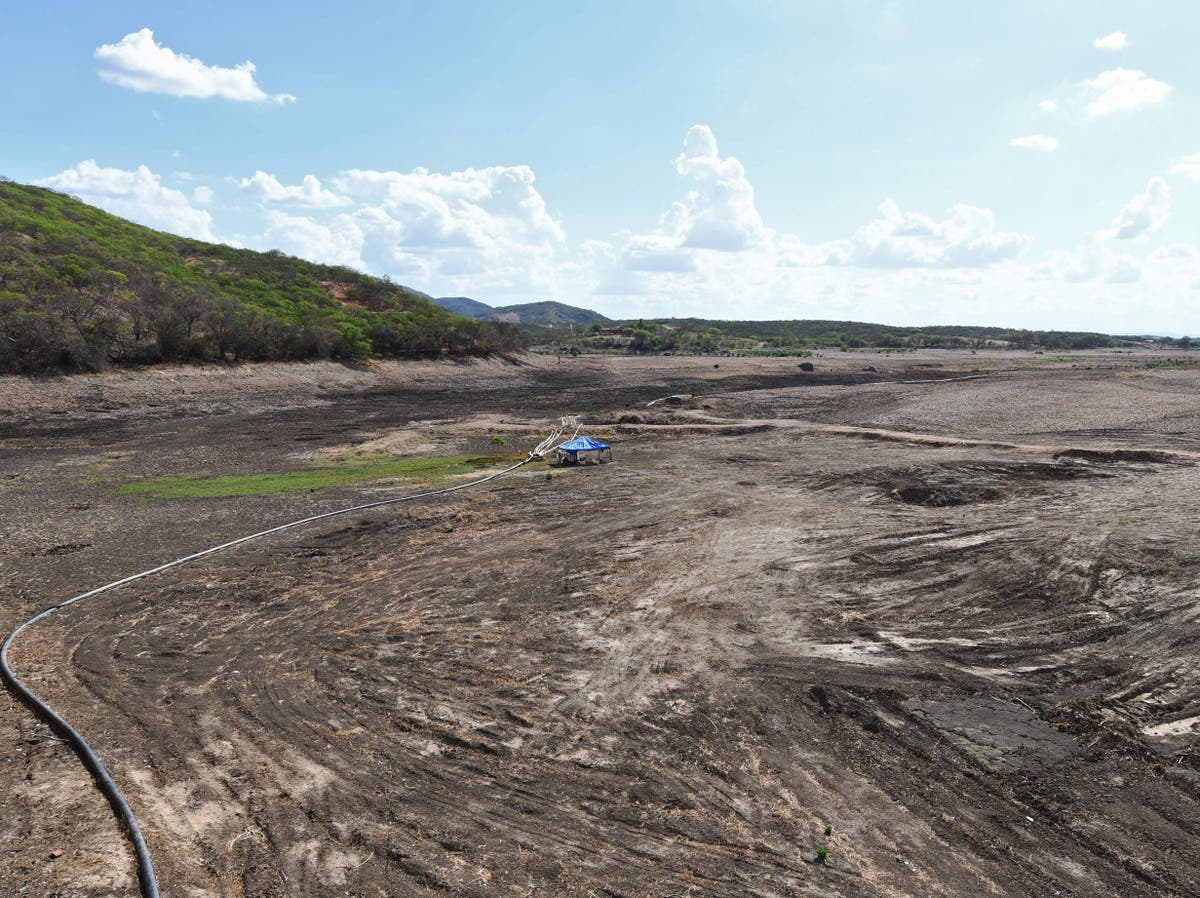 Brazil facing worst drought in nearly 100 年