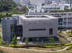 Why are Wuhan lab leak theories gaining traction?