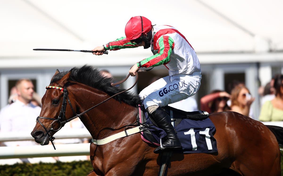 Francky Du Berlais pounces for victory in Uttoxeter feature