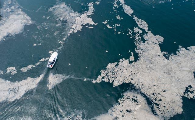 A fishing boat sails in the sea-snot covered Marmara sea near Istanbul, Turkye