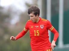 Wales Euro 2020 squad: Uncapped teenager Rubin Colwill makes the cut