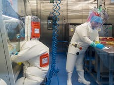 Scientific community divided over Wuhan lab leak theories