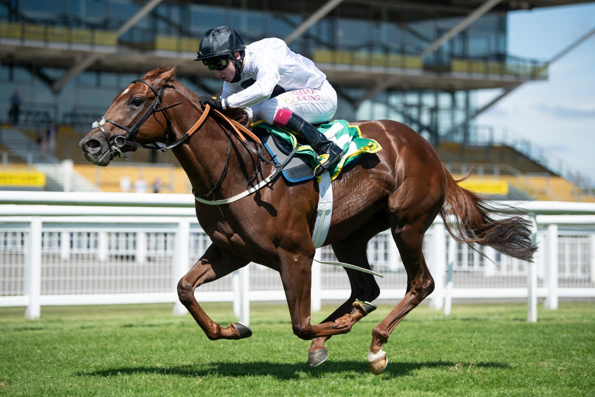Method on course for Commonwealth Cup