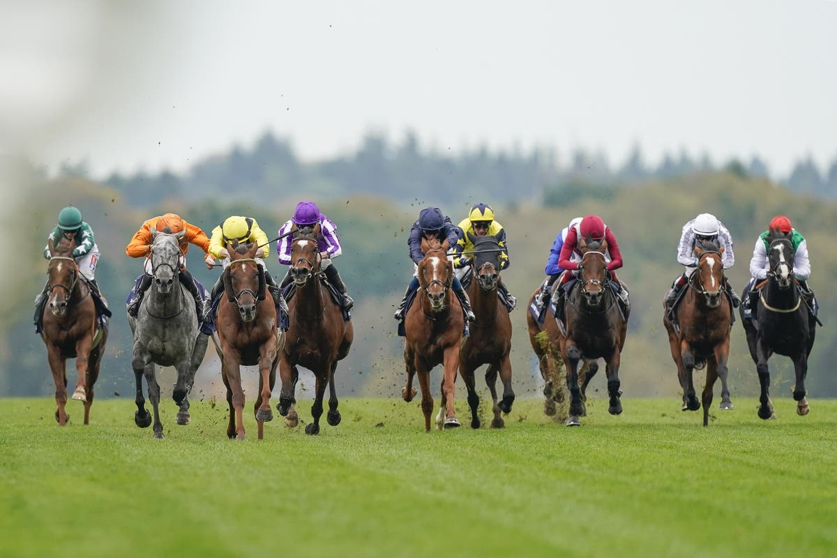 Reynier sets sights on Champion Stakes date for Skalleti