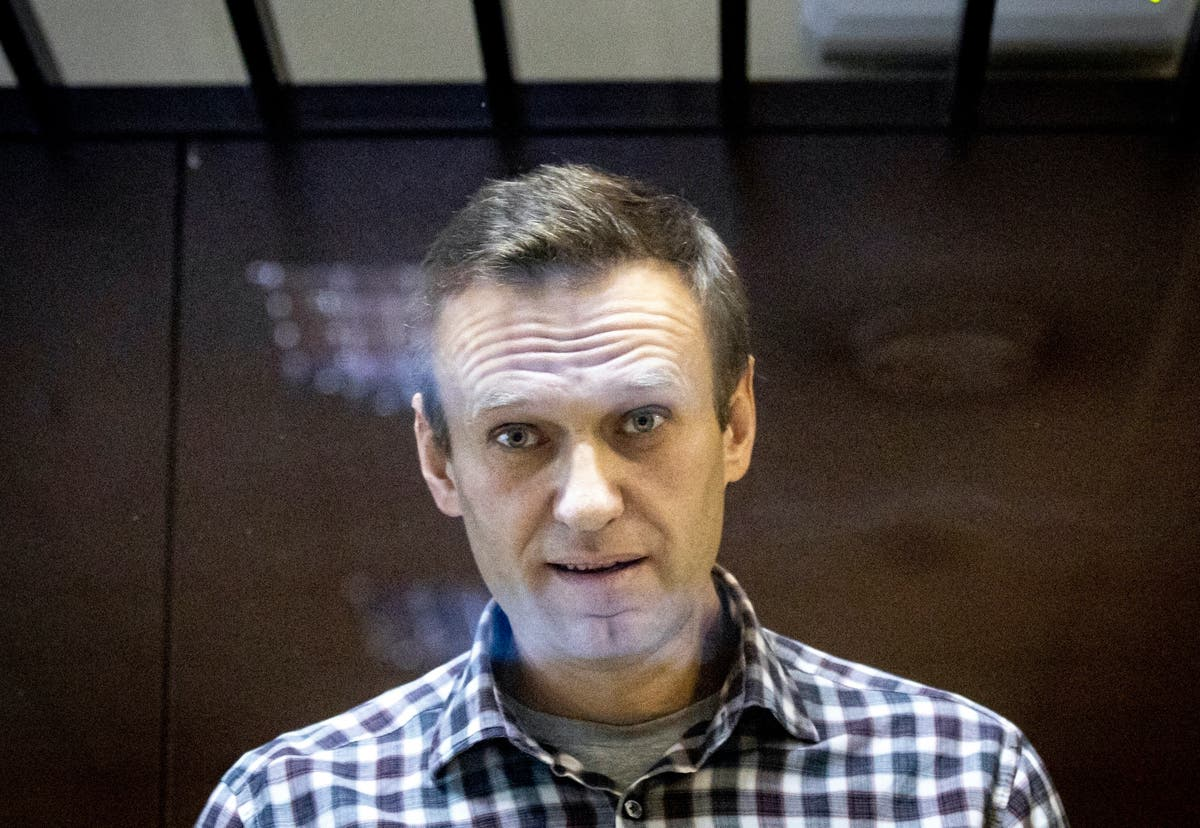 Russia's Navalny asks court to end prison security checks