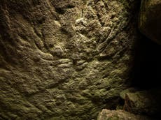 Prehistoric deer carvings found by chance in Scottish tomb