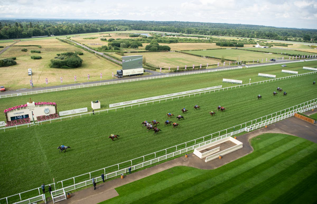 Charities to receive bookmakers' Britannia Stakes profits