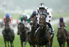 Oscula in Royal Ascot picture after continuing golden run of Boughey juveniles