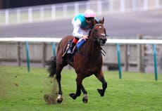 Enable's brother Derab going for French Derby gold