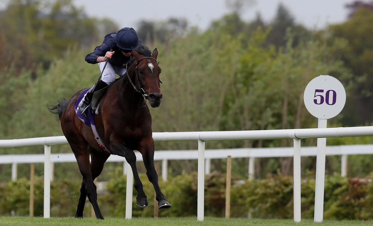 Cut that hindered Bolshoi Ballet Derby chance not expected to sideline colt for long