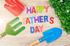 12 Father's Day gifts for dads who love gardening