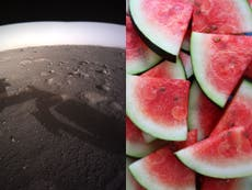 There's no evidence of watermelons on Mars, even if The New York Times says so