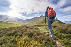 Hiking isn't just good for your body, it's good for your mind too