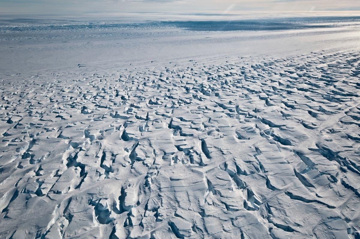 Antarctica hits record-high temperature, UN confirms