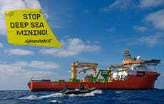 Greenpeace launch legal action against UK government over secrecy on deep sea mining