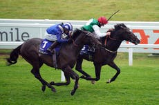 Haggas readies strong challenge in Hardwicke Stakes