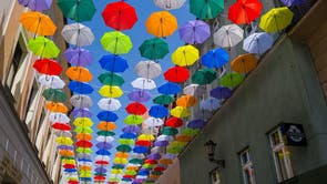 Several hundred brightly coloured umbrellas decorate the Bankowa Street walkway in Pszczyna, southern Poland