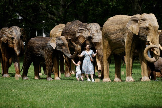A woman and child examine life-size sculptures of a herd of Asian elephants set up by the Elephant Family and The Real Elephant Collective to help educate the public on the elephants and the ways in which humans can better protect the planets biodiversity, in Green Park, central London