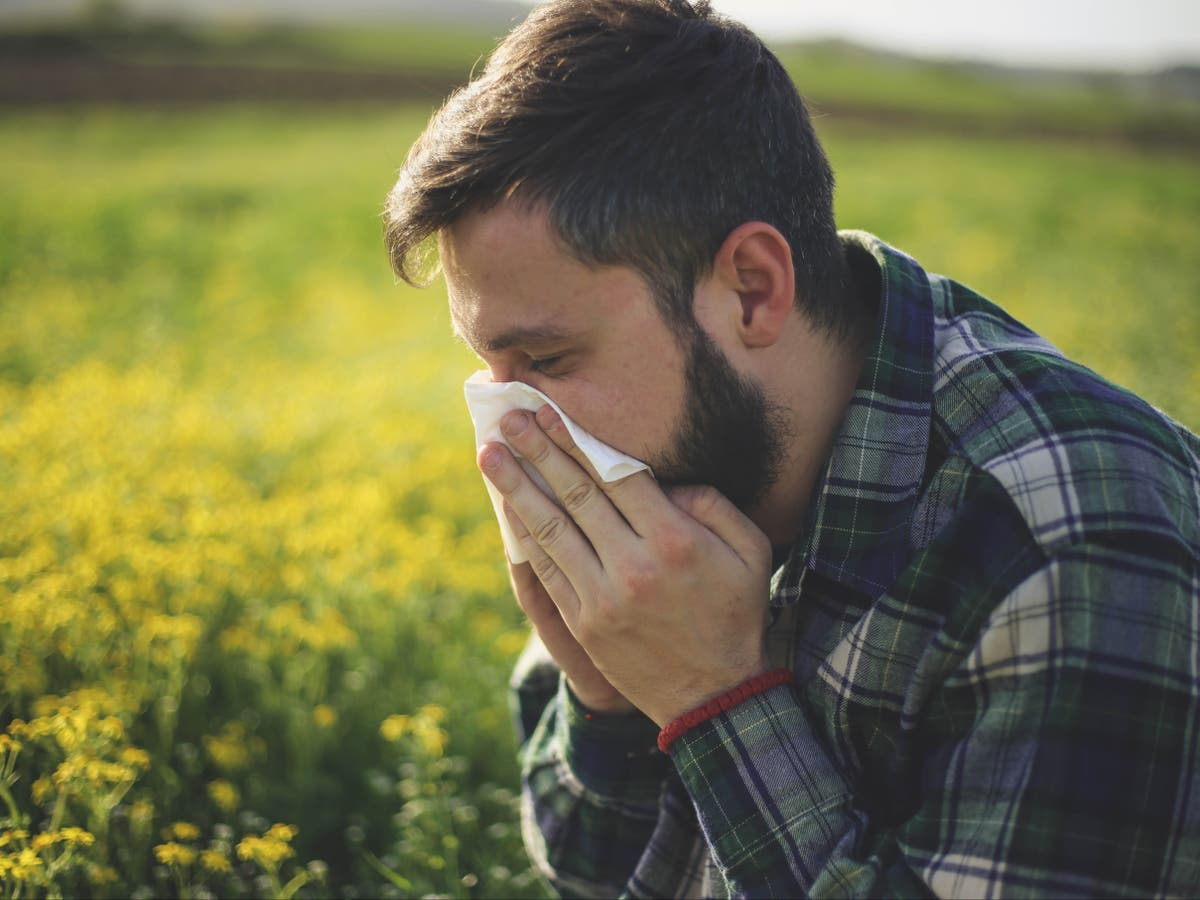 Ask an allergy expert anything about hay fever amid 'pollen bomb'