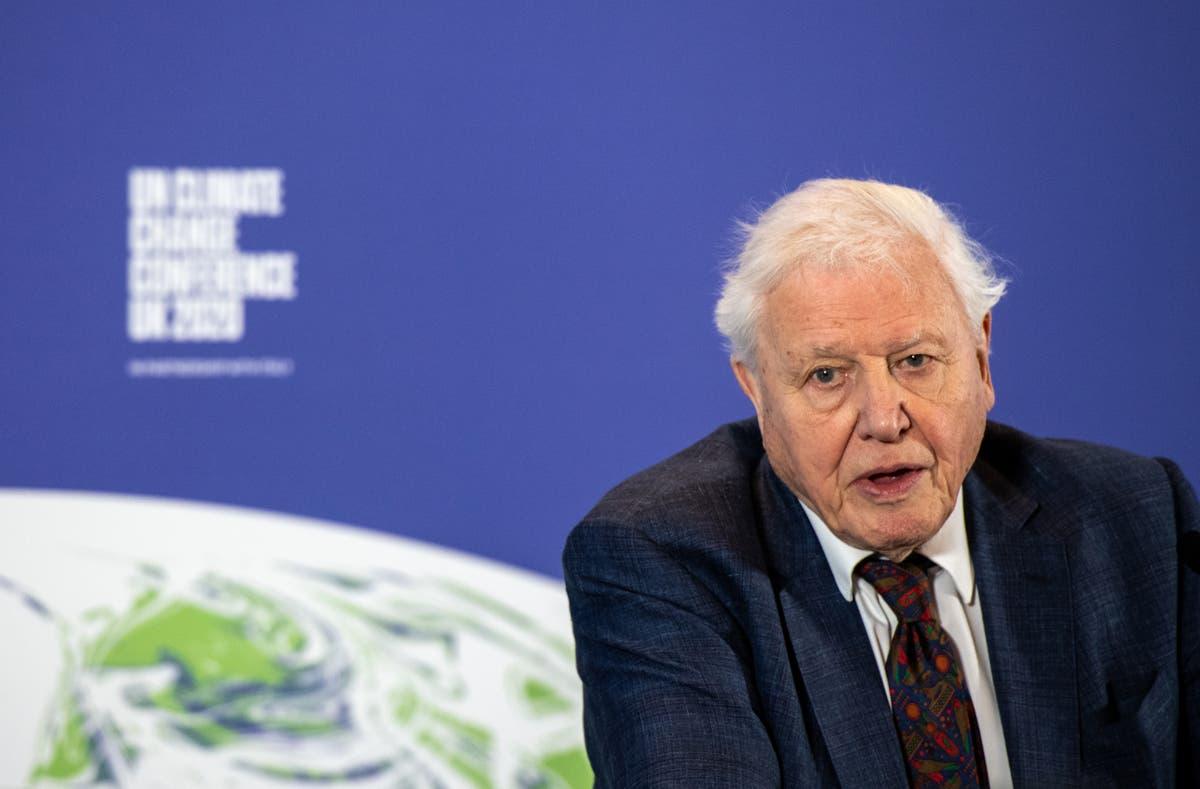 David Attenborough backs calls for 'open and transparent debate' on broadcasting