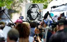Britney Spears' public support may not mean much in court