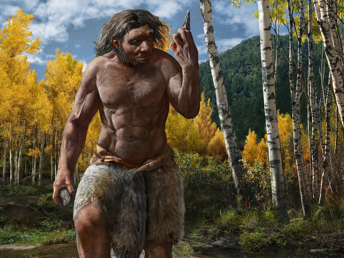 New species of ancient human may replace Neanderthals as our closest relative