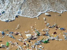 New Zealand to ban most single-use plastics by 2025